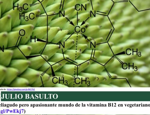 El peliagudo pero apasionante mundo de la vitamina B12 en vegetarianos